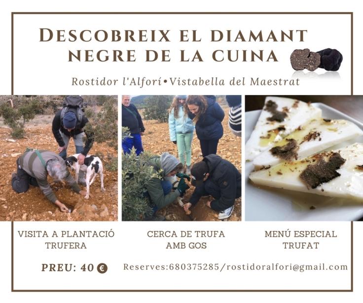 Descobreix el diamant negre de la cuina Trufa Vistabella